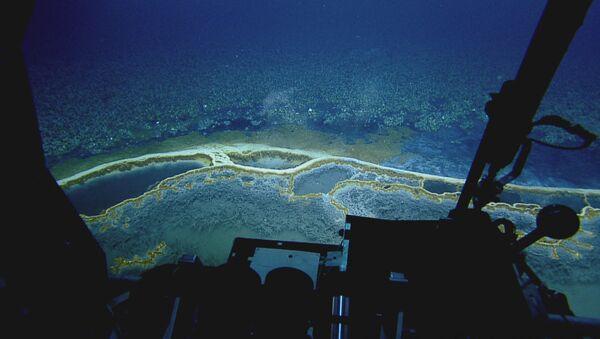 ABŞ-ın Nyu Orlean ştatında suyu dəniz suyundan 5 dəfədən artıq duzlu olan sualtı hovuz - Sputnik Azərbaycan