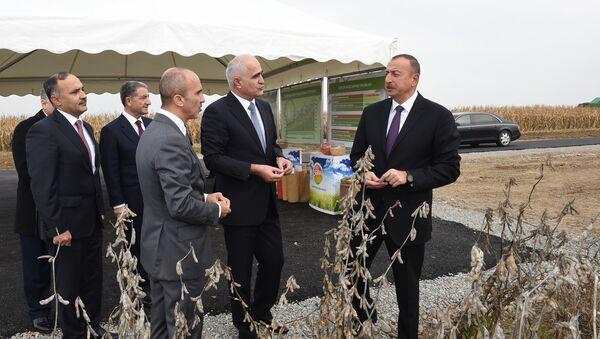 Президент Ильхам Алиев совершил поездку в Бейлаганский район - Sputnik Азербайджан
