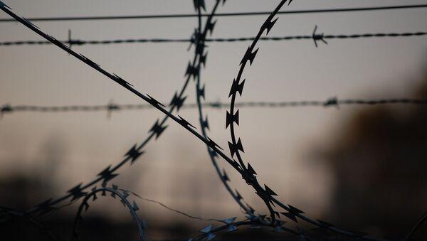 Колючая проволока, фото из архива - Sputnik Azərbaycan