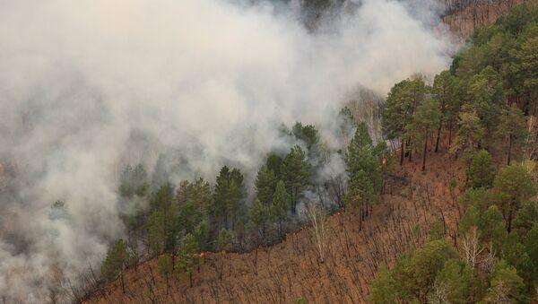 Природные пожары, фото из архива - Sputnik Азербайджан