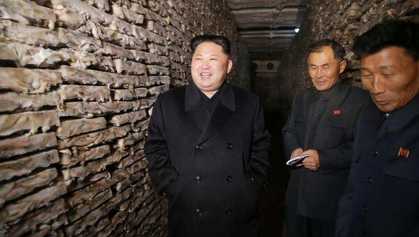 Лидер Северной Кореи Ким Чен Ын, фото из архива - Sputnik Азербайджан
