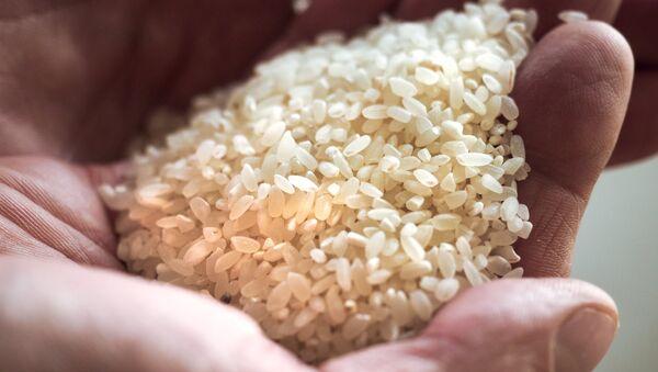 Готовая продукция завода по переработке зерна, собранного на рисовых полях, фото из архива - Sputnik Азербайджан