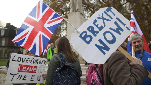 Демонстранты у здания парламента в Лондоне, 23 ноября 2016 года - Sputnik Азербайджан