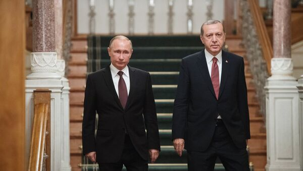 Визит президента РФ В. Путина в Турцию - Sputnik Азербайджан