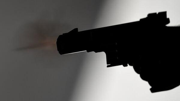 Скоростной пистолет - Sputnik Азербайджан