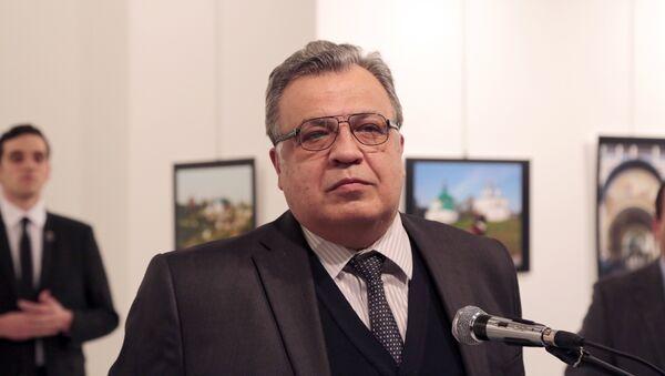Выступление Андрея Карлова в художественной галерее в Анкаре, архивное фото - Sputnik Азербайджан