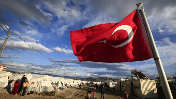 Турецкий флаг, фото из архива - Sputnik Азербайджан