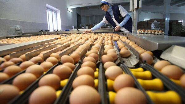 Сортировка куриных яиц, фото из архива - Sputnik Азербайджан