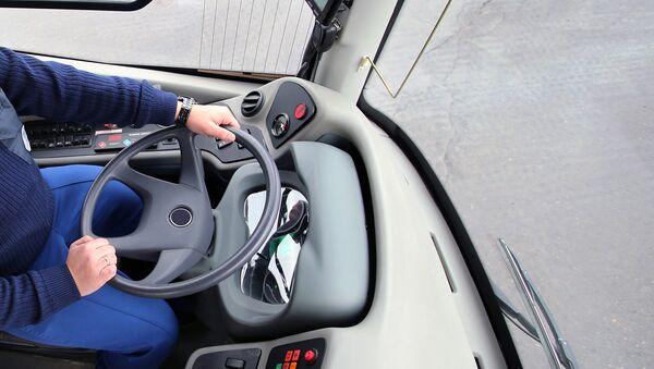 Водитель за рулем автобуса - Sputnik Азербайджан