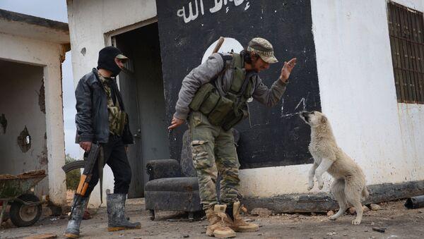 Бойцы из Свободной сирийской армии играют с собакой на контрольно-пропускном пункте, который они захватили у Исламского государства (IS) в районе города Габасин, расположенный к северо-востоку от города Аль-Баб - Sputnik Азербайджан