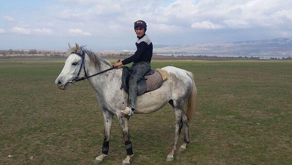 Лошадь породы дильбаз - Sputnik Азербайджан