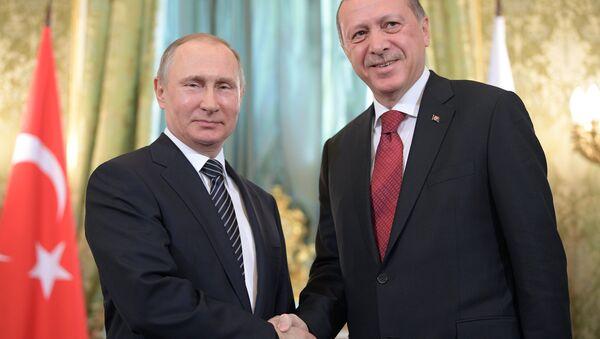 Президент РФ В. Путин принял участие в заседании Совета сотрудничества высшего уровня между РФ и Турцией - Sputnik Азербайджан