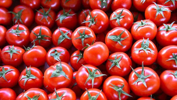 Продажа помидоров, фото из архив - Sputnik Азербайджан