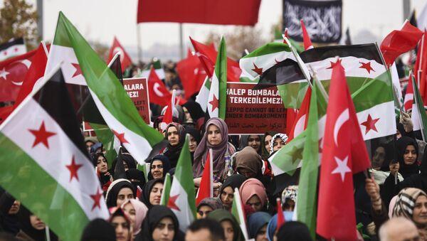 Протестующие с флагами Сирии и Турции во время демонстрации в Рейханли в Хатае, недалеко от сирийской границы, 17 декабря 2016 года - Sputnik Азербайджан
