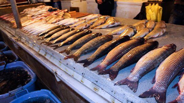 8-ci kilometr bazarında balıq satışı - Sputnik Azərbaycan