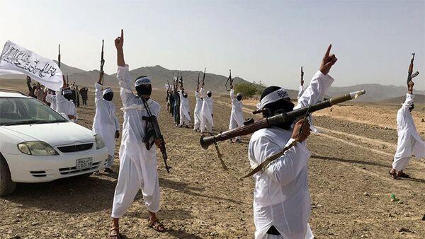 Последователи течения Талибана Mahaaz- e- Dadullah - Sputnik Азербайджан