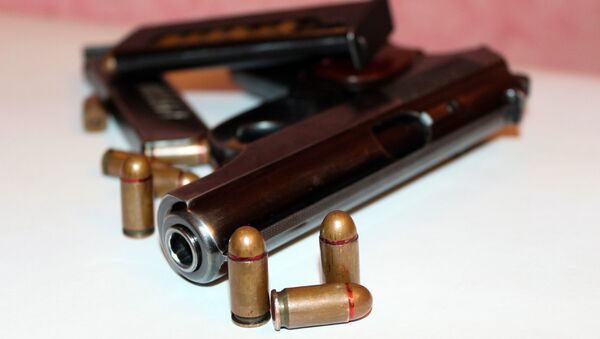 Пистолет и боеприпасы к нему, фото из архива - Sputnik Azərbaycan