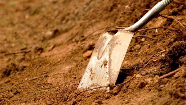 Лопата, фото из архива - Sputnik Азербайджан