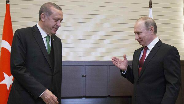 Президент России Владимир Путин (справа) на встрече со своим турецким коллегой Тайипом Эрдоганом в Сочи, Россия, 3 мая 2017 года - Sputnik Азербайджан