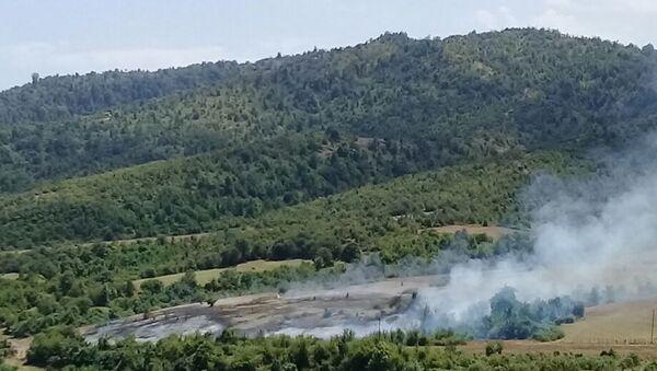 Пожар в Гирканском национальном парке - Sputnik Азербайджан