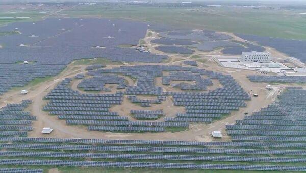 Солнечную электростанцию в виде панд построили в Китае - Sputnik Азербайджан