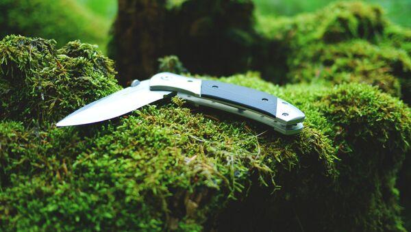 Нож, фото из архива - Sputnik Азербайджан