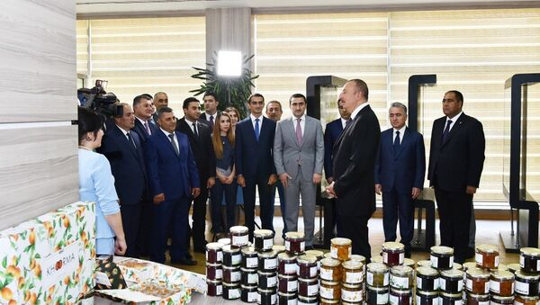 Президент принял участие в открытии в Балакене ремесленного центра ABAD - Sputnik Азербайджан
