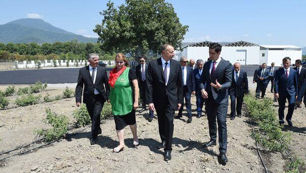 Президент ознакомился с продолжающимся строительством объекта производства розового масла - Sputnik Азербайджан