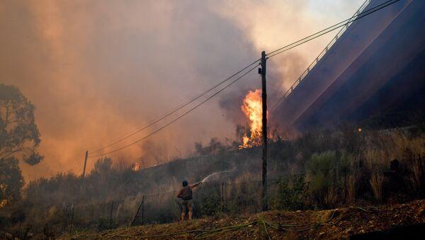 Лесные пожары в Португалии, 11 августа 2017 года - Sputnik Азербайджан