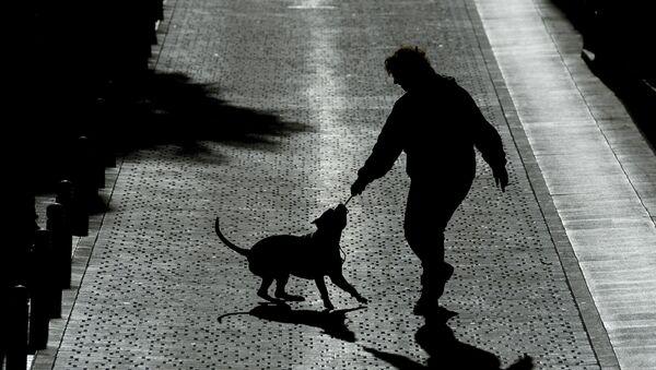 Силуэты женщины и собаки, фото из архива - Sputnik Азербайджан