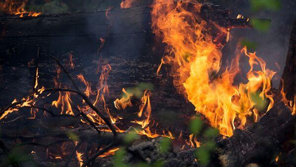 Пожар в селе, фото из архива - Sputnik Azərbaycan