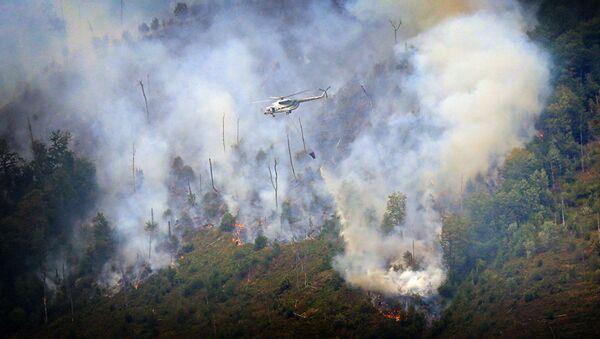 Вертолет тушит лесной пожар в Боржоми-Харагаульском лесу - Sputnik Азербайджан