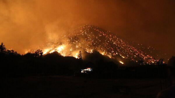 Пожар в Боржоми-Харагаульском лесу в Грузии - Sputnik Азербайджан