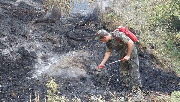 Сотрудник МЧС Азербайджана во время тушения лесных пожаров, фото из архива - Sputnik Азербайджан