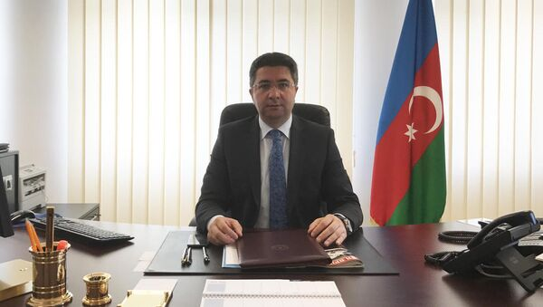 Посол Азербайджана в Германии Рамин Гасанов. - Sputnik Азербайджан