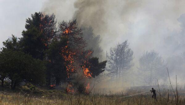 Работы по тушению лесных пожаров, фото из архива - Sputnik Азербайджан