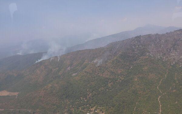 Лесные пожары на территории Габалинского района - Sputnik Азербайджан
