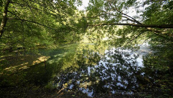 Göl, arxiv şəkli - Sputnik Azərbaycan