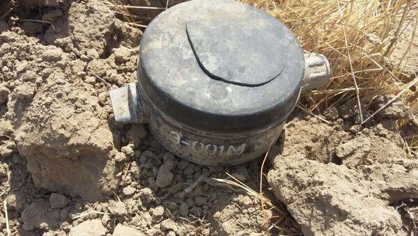 Qarqar çayının sahilində Ermənistan istehsalı olan piyada əleyhinə mina aşkar edilib - Sputnik Azərbaycan