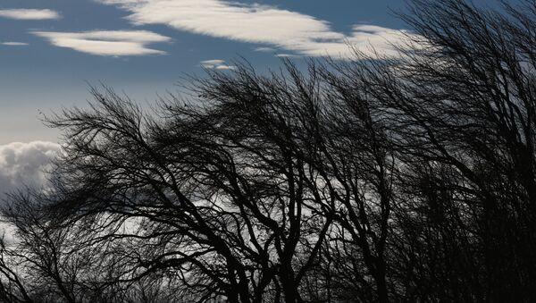 Ветер, фото из архива - Sputnik Азербайджан