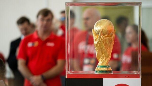 Представление кубка чемпионата мира 2018 в спортивном комплексе Красная звезда в Омске - Sputnik Азербайджан