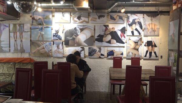Кафе, посвященное женским бедрам в Токио - Sputnik Азербайджан