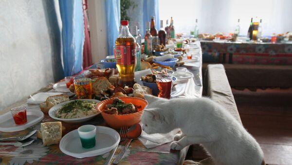 Кошка лезет на стол во время подготовки к застолью, фото из архива - Sputnik Азербайджан