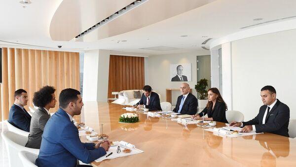 Первый вице-президент Азербайджана встретилась с членами группы дружбы Франция-Азербайджан Национальной Ассамблеи Франции - Sputnik Азербайджан