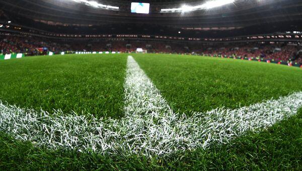 Травяное покрытие на футбольном поле стадиона Лужники во время товарищеского матча по футболу между сборными России и Аргентины - Sputnik Азербайджан
