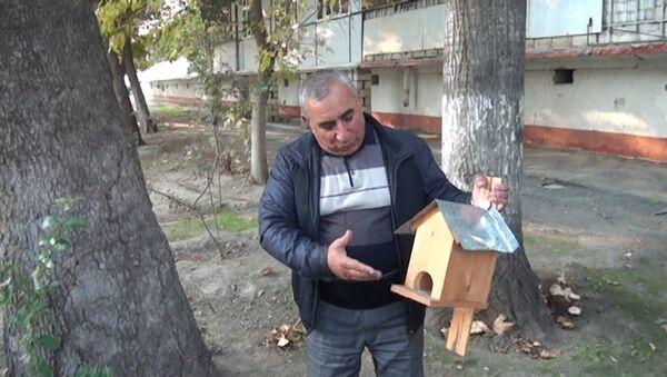 Житель Мингячевира приютил воробьев, скворцов и дроздов - Sputnik Азербайджан