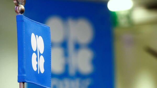 Флаг OPEC перед конференцией в Вене, Австрия, 24 октября 2016 года - Sputnik Азербайджан