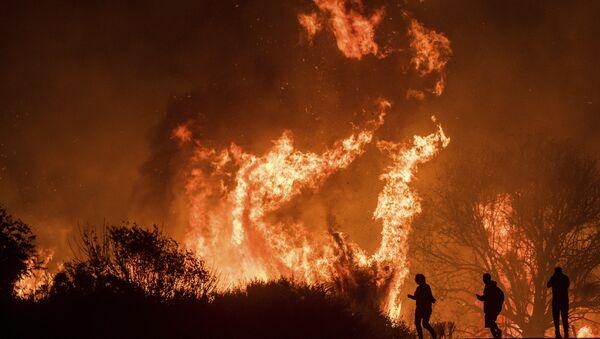 Лесной пожар, архивное фото - Sputnik Азербайджан