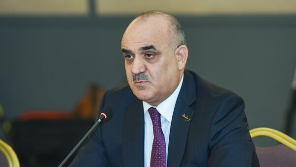 Министр труда и социальной защиты Салим Муслимов, архивное фото - Sputnik Азербайджан