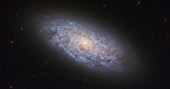 Галактика NGC 5949 в созвездии Дракона, нарушающая законы распределения темной материи - Sputnik Азербайджан